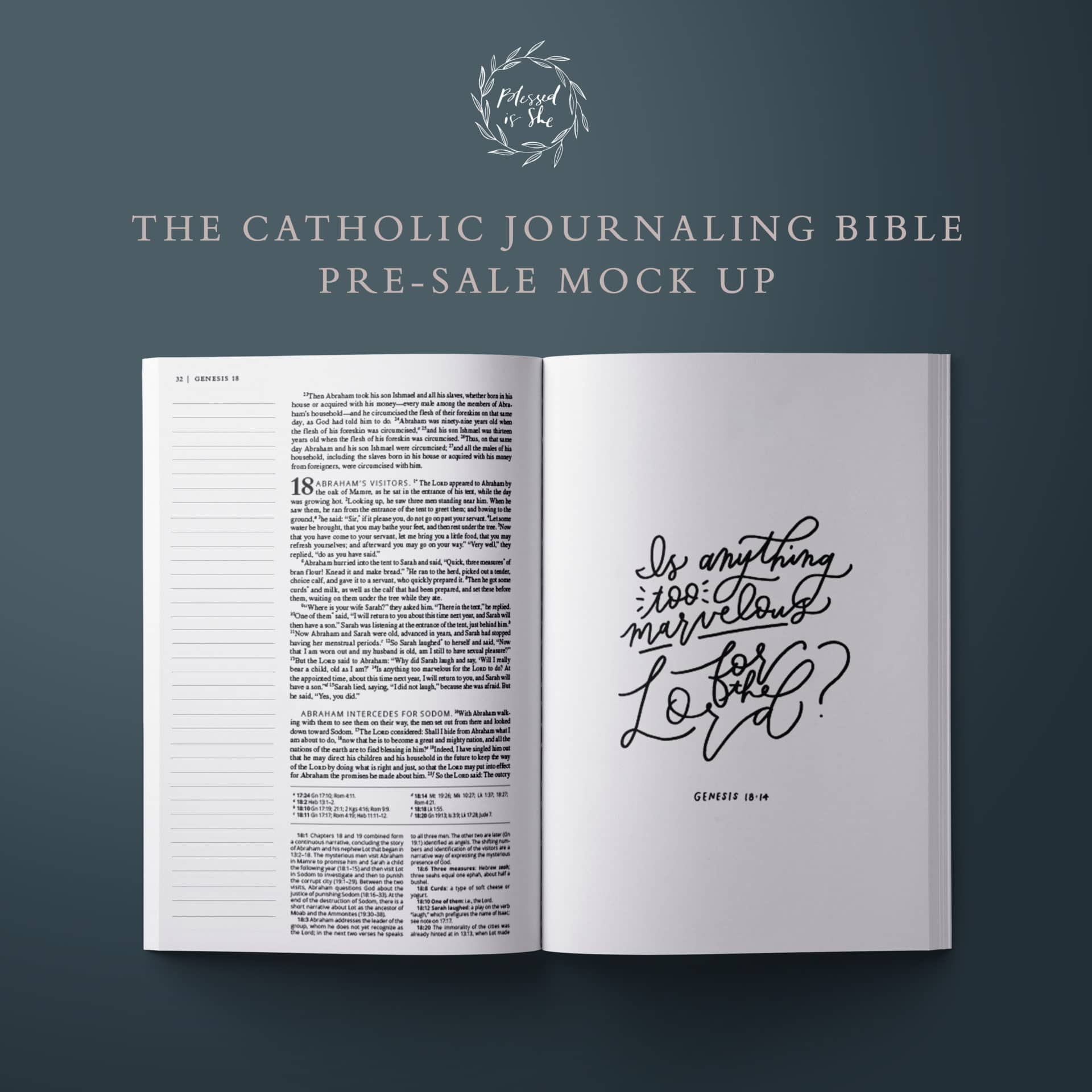 is there a catholic journaling bible?