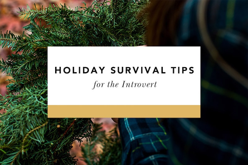 holiday survival tips for the introvert