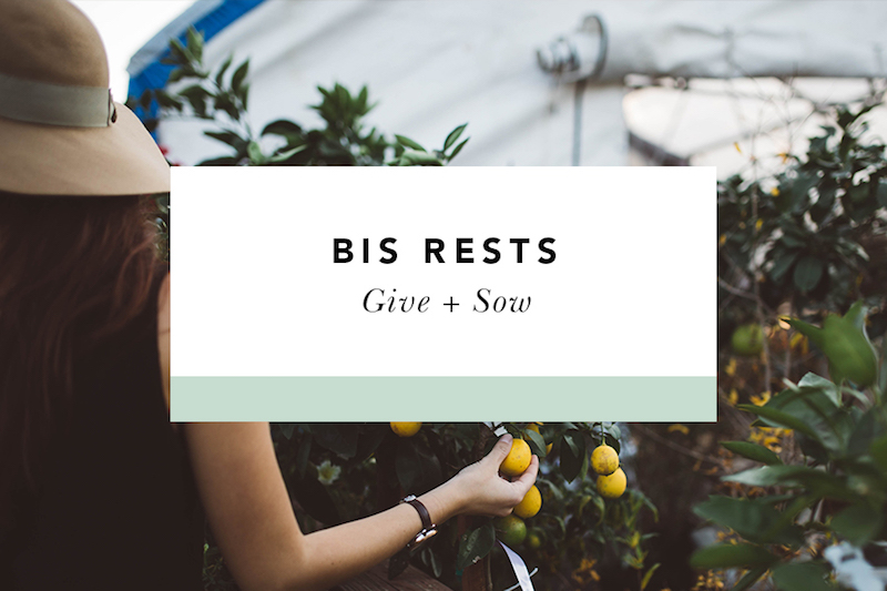 bis rests give + sow