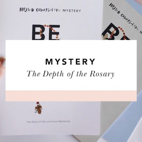 rosary study group individual mystery