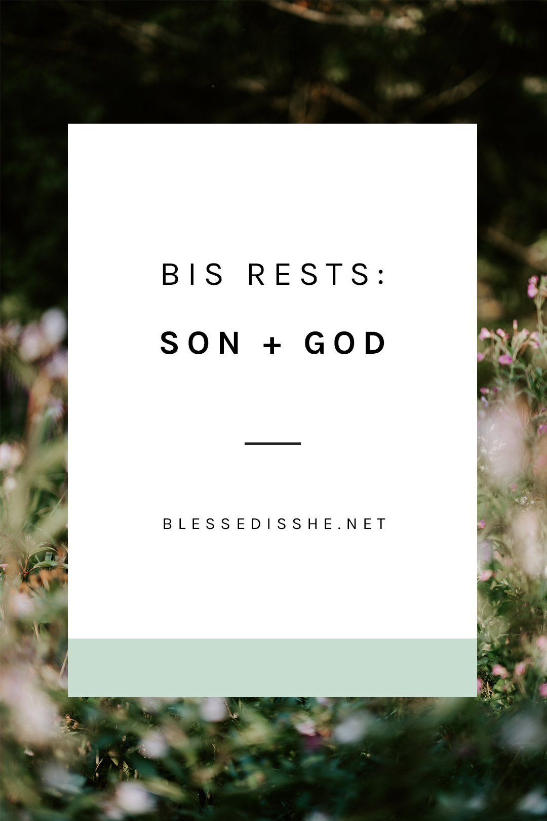 bis rests son + god