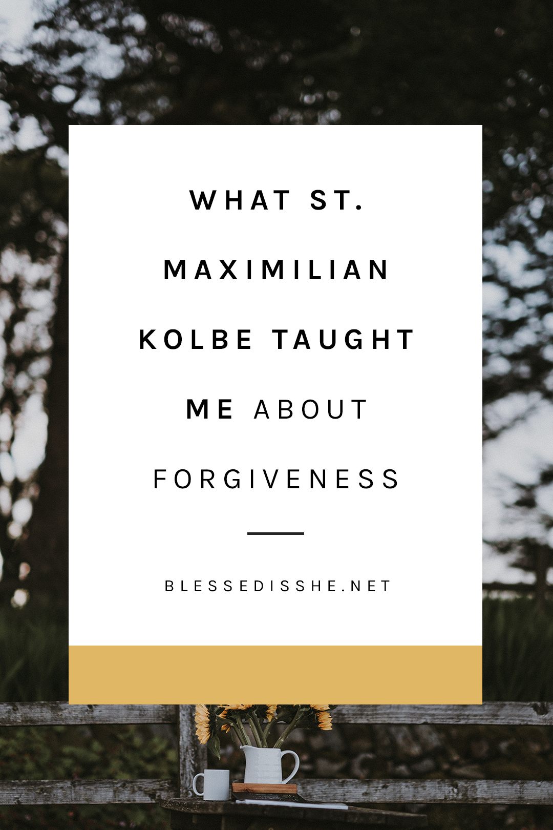 Forgiveness Sunday in 2019 99