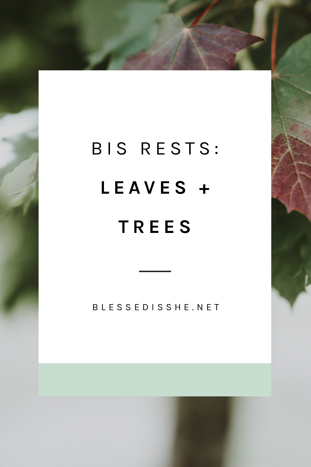 bis rests leaves + trees