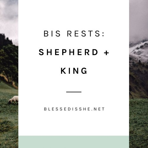 bis rests shepherd + king