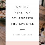 reflection feast st. andrew the apostle
