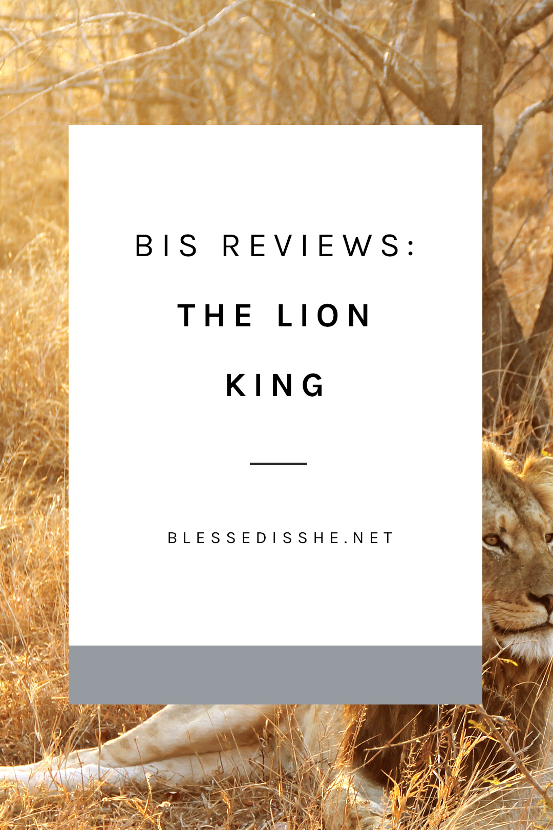the lion king movie christian perspective